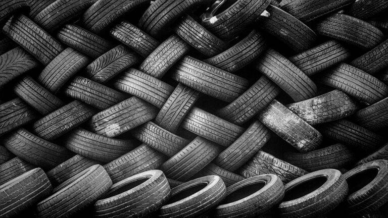 Hvordan ender bildæk i krebsdyr?